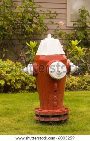 A new red and white fire hydrant