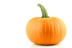 A nice orange Pumpkin on a white background.