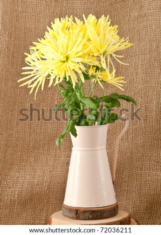 A nice rustic image of a bunch of chrysanthemums in a pink retro jug