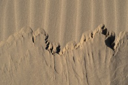 A nice shot of shifting sands in a desert.