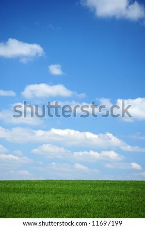 A nice summer sky