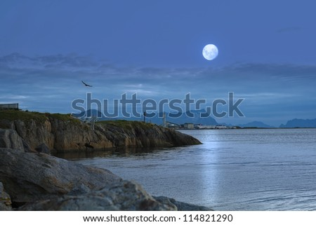 A night photo of moon and ocean, Norway