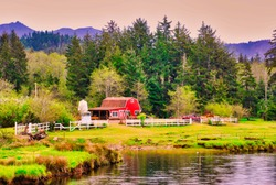 A Old Red Barn on a Homestead in the Pacific Northwest