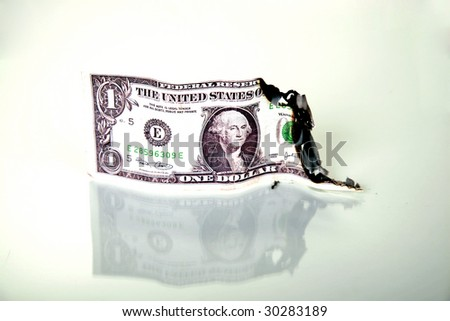 "a one dollar bill on fire  ""money to burn"""