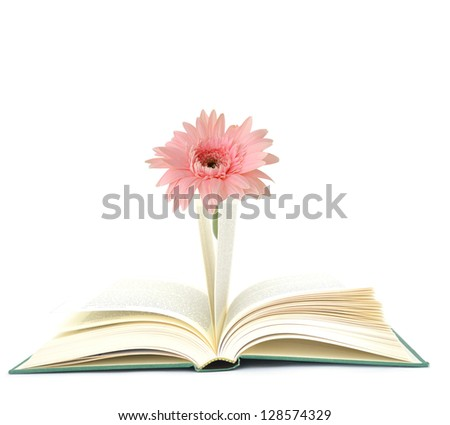 A opening book with gerber flower