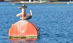 A pair of adult brown American pelicans perched on a bright orange ship mooring barrel floating in rippling blue Caribbean sea water. Room for text and copy space.