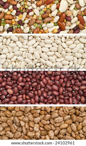 A panel of assorted dried beans.