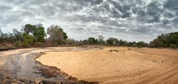 A panorama of a dry riverbed in Kruger national Park, South Africa, suddenly flows from sudden heavy rainfall, ending many months of drought.