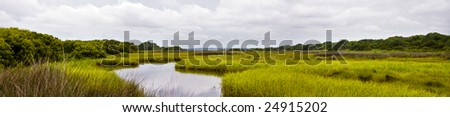 a panorama of a marsh in Wilmington, NC.