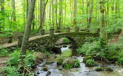 A Panorama of an Old Moss Covered Stone Bridge in the Great Smoky Mountains National Park, Tennessee