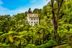 A panorama view over the tropical garden above the city of Funchal Madeira