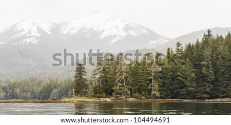 A panoramic view of Alaska with evergreen covered forests and snow covered mountains