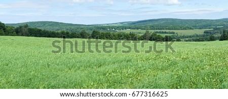 A panoramic view of the farms #677316625