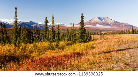 A panoramic view of tundra and mountainous landscape in the last frontier of Alaska