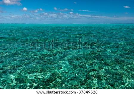 A paradisical seascape, Bassas Da India, 2008