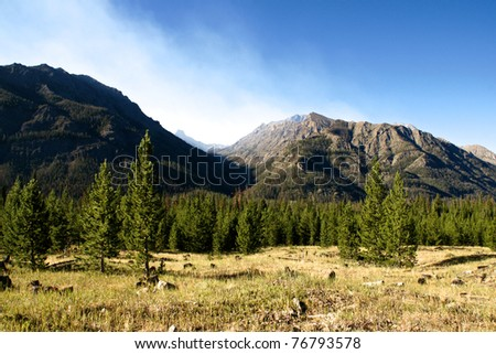 A pass through the mountains opens through the trees in northern Wyoming.
