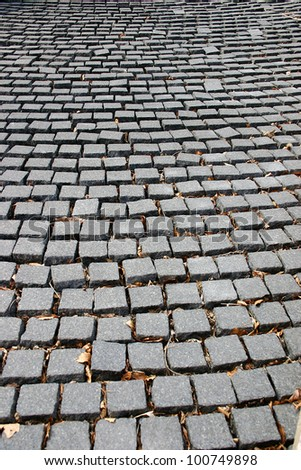 A path made up of cobblestones in New York City
