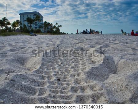 A path on the beach  #1370540015