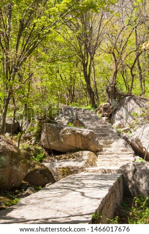 a path path built of stones in the valley #1466017676