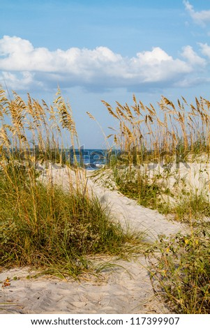 A pathway cuts through the dunes leading to the beach.