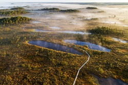 A pathway for hikers through an Estonian bog in Soomaa National Park
