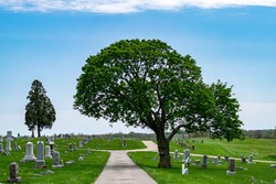 a pathway into a cemetery with beautiful green trees and blue skies