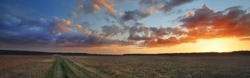 A pathway through the agricultural field under the colorful sunset cumulus clouds after the rain, golden sunlight. Dramatic cloudscape. Idyllic rural landscape. Picturesque panoramic scenery