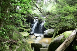 A peaceful, secluded brook flows between  moss covered rocks in the sandstone gorge of Dismals Canyon, Alabama, a designated World Heritage site since 1974