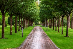 a pedestrian walkway made of tiles, leaving in perspective into the park around the walkway, ground lights and trees planted in a row along the walkway.