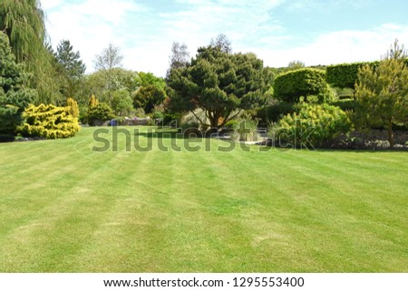 A perfect English country garden with manicured lawn and walled raised boarder surrounded by shrubs, small trees and some colourful flowers. #1295553400