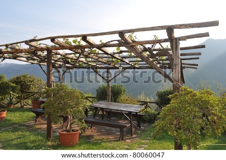 a pergola in a garden forming a shaded walkway passageway or sitting area stock photo 80060047. Black Bedroom Furniture Sets. Home Design Ideas