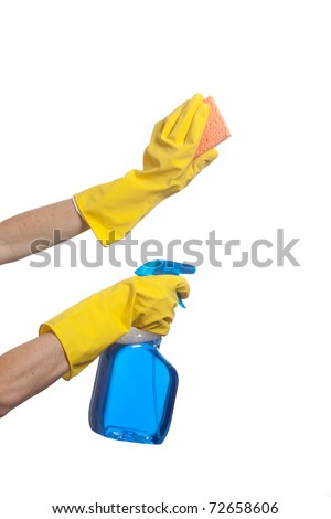 A Person Holding a spray bottle and scrub brush