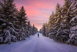 A person standing in winterlandscape in Sweden