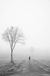 A person walks in the fog on an empty road.