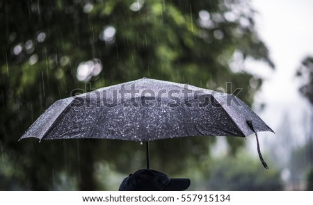 A person with an umbrella in the rain. #557915134