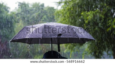 A person with an umbrella in the rain. #568916662