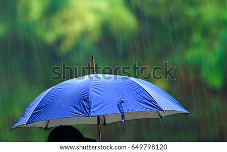 A person with an umbrella in the rain. #649798120