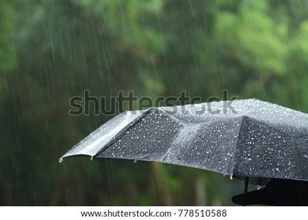 A person with umbrella in rain. #778510588