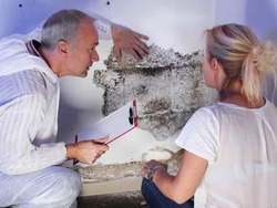 a pest control contractor or exterminator with a blonde female customer at a mold destroyed wall and explain her the problem and the plan whats to do against mold pests and bugs for hygienic