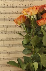 A photo of a bunch of orange colored tea roses on a background of aged sheet music, slightly toned