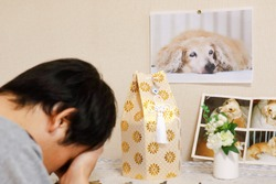 A photo of a deceased dog and his remains. The owner, a Japanese man, is crying.