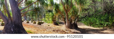 A photo of African wilderness - dry land