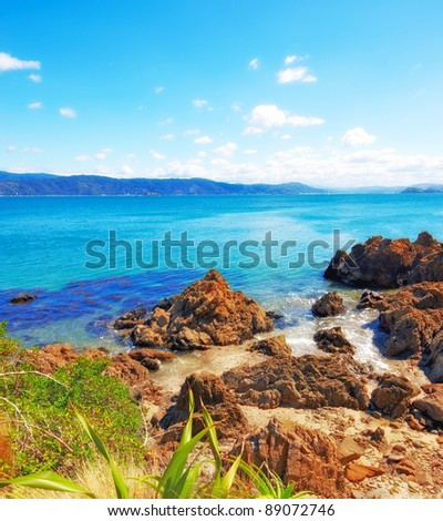 A  photo of Coastline - Wellington, New Zealand