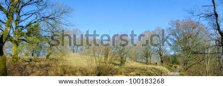 A photo of Early springtime in the countryside