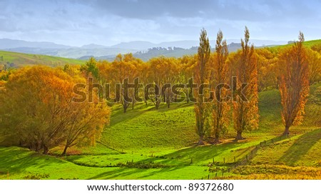 A  photo of Sunrise in autumn in New Zealand