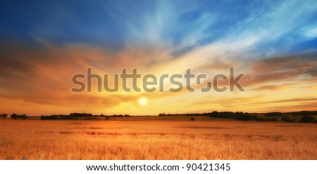A photo of sunset in the countryside