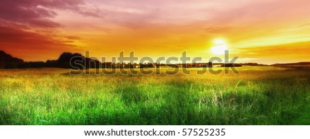 A  photo of sunset in the countryside at summertime