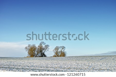 A photo of the countryside in early winter