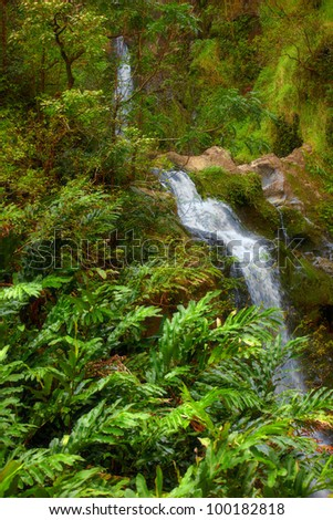 A photo waterfall in rain forest - Maui