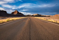 A photograph of the Petrified Forest National Park landscape showing the central road and the accompanying roadside, Arizona, United States.